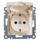 Розетка электрическая с крышкой и заземлением Lumina 2 (Hager WL1151)